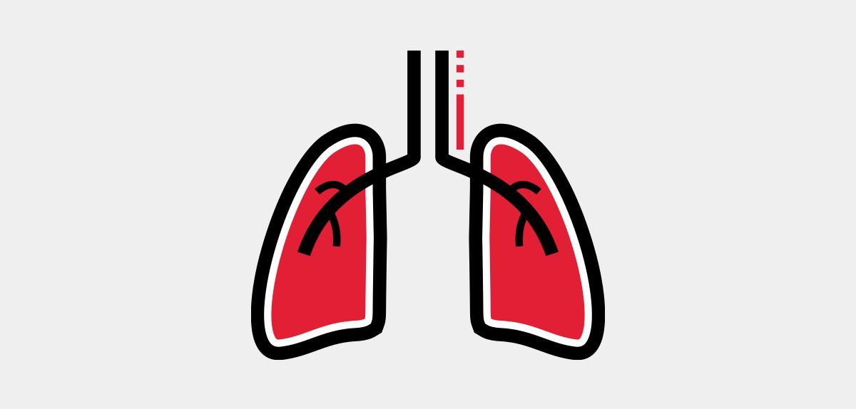 Icon illustration of lungs.