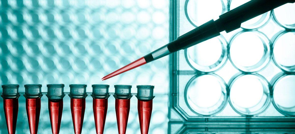 Liquid specimens in vials.
