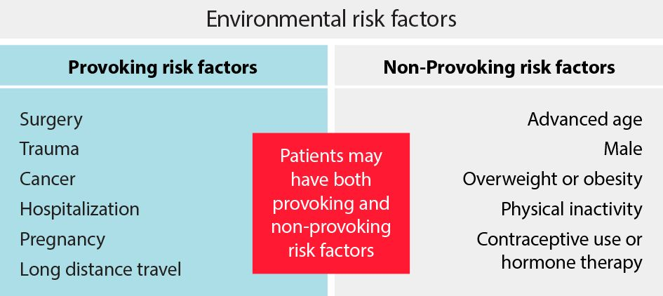 VTE environmental risk factors chart.
